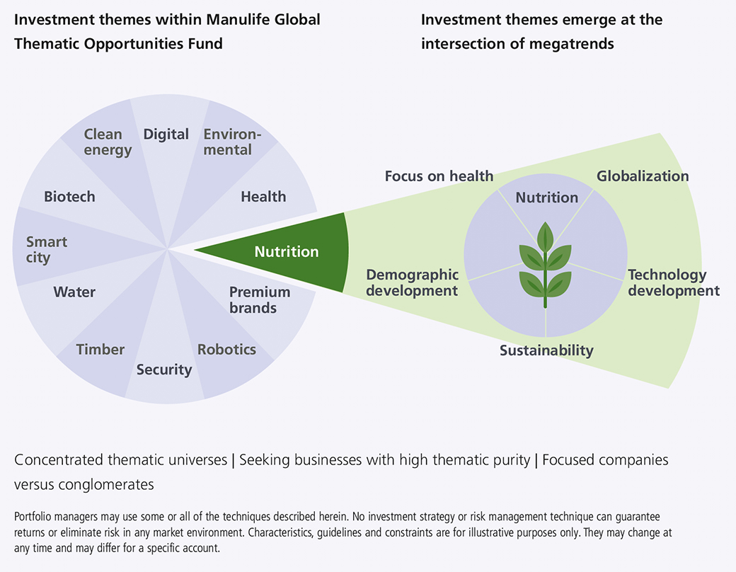 This modified pie chart with a breakdown of one segment illustrates how the current 12 themes of the global thematic opportunities fund are derived from the intersection of several megatrends. For example, the nutrition investment theme is a combination of the megatrends of focus on health, globalization, technology development, demographic development and sustainability.